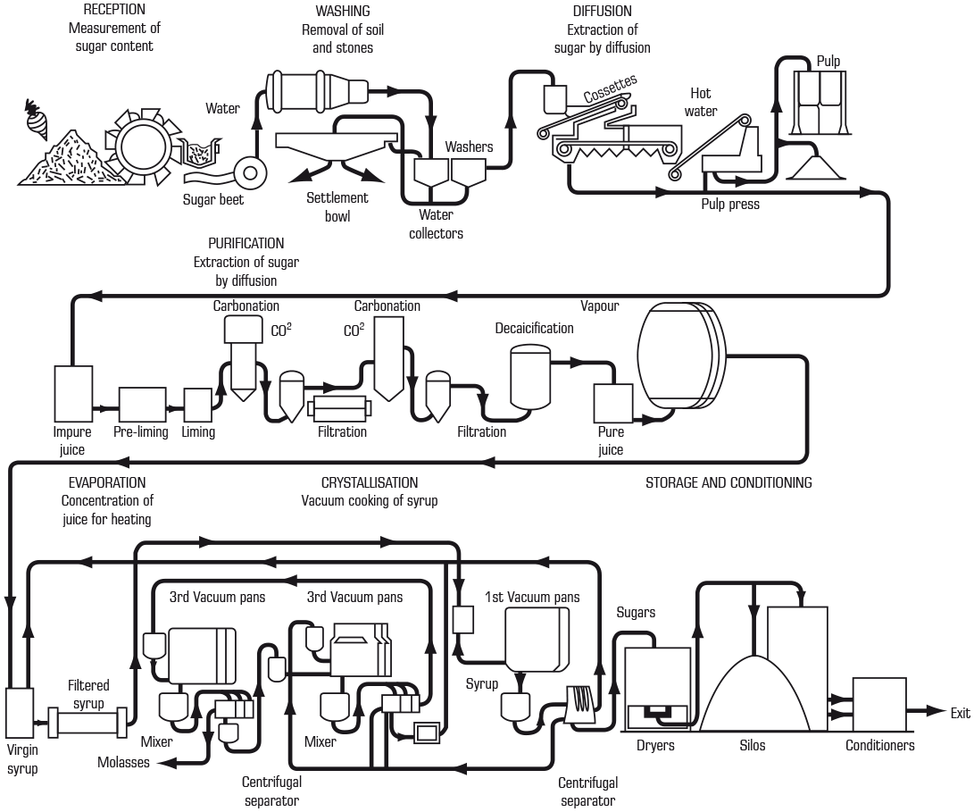 sugar-rys-typical-layout-in-sugar-beet-diffuser-process.png